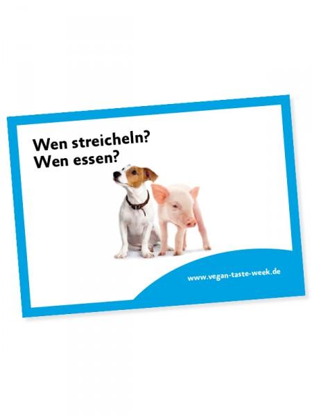 albertschwetzer4